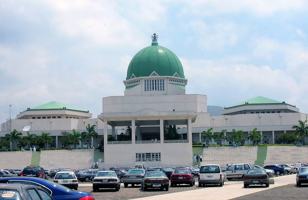 NASS Leadership: Gender rights activist urges more positions for women