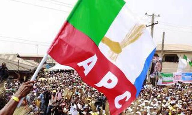 Image result for APC flag