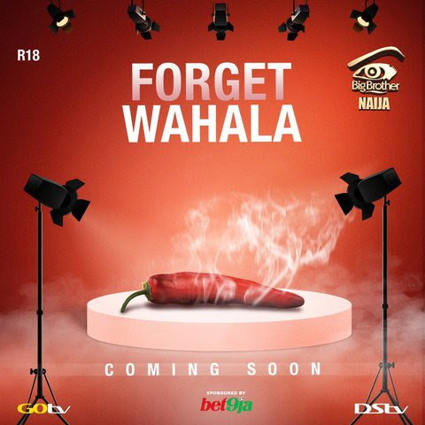 Anxiety high as season 4 of Big Brother Naija set to air