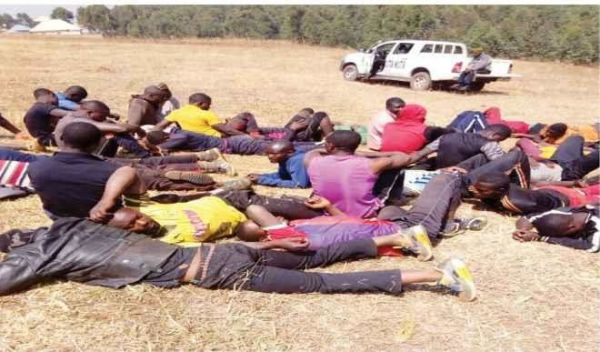 •Some of the arrested suspected Cameroonian militants