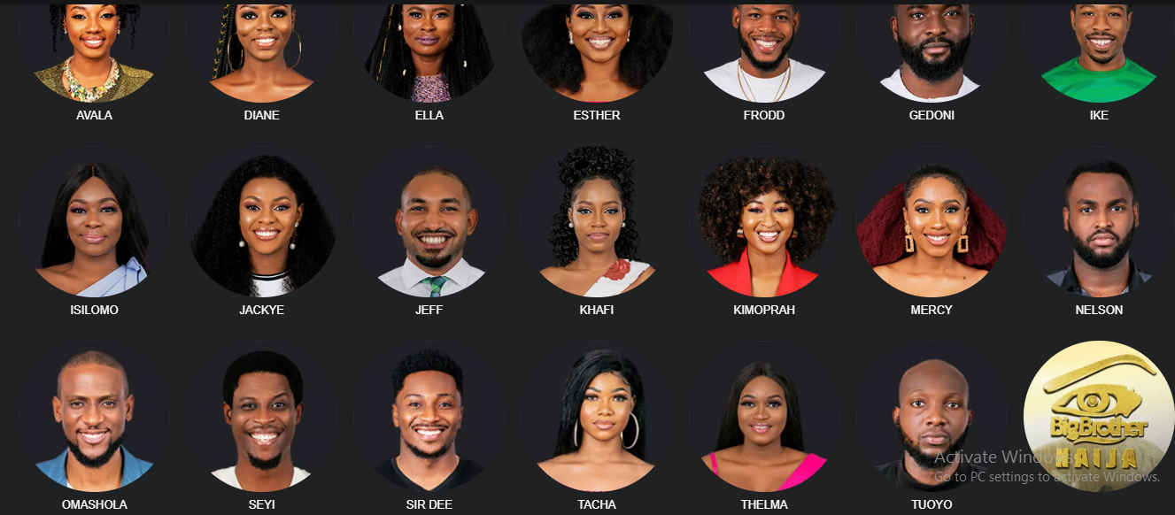 Awo's grandson, 20 other housemates slug it out in BBNaija 4 •Facts about the housemates