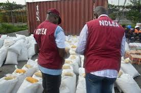 •NDLEA officials