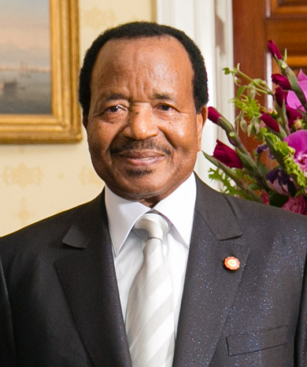 Tension in Cameroon as Southerners demand independence