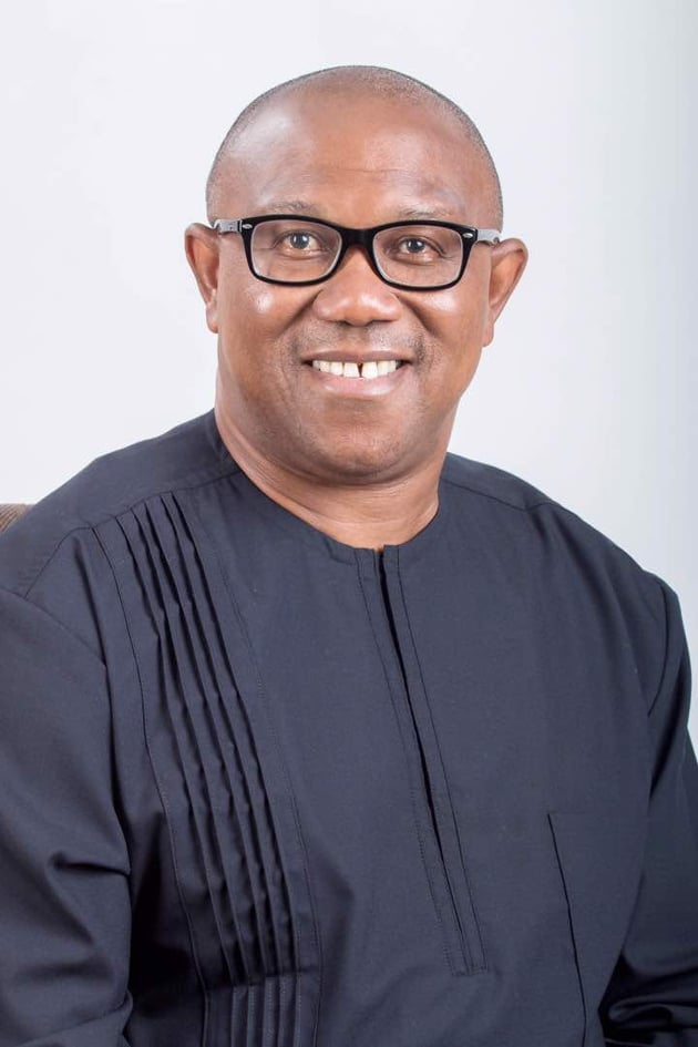 The Peter Obi exclusive: My fears for Nigeria •Opens up on insecurity, unemployment, debt burden, Obiano