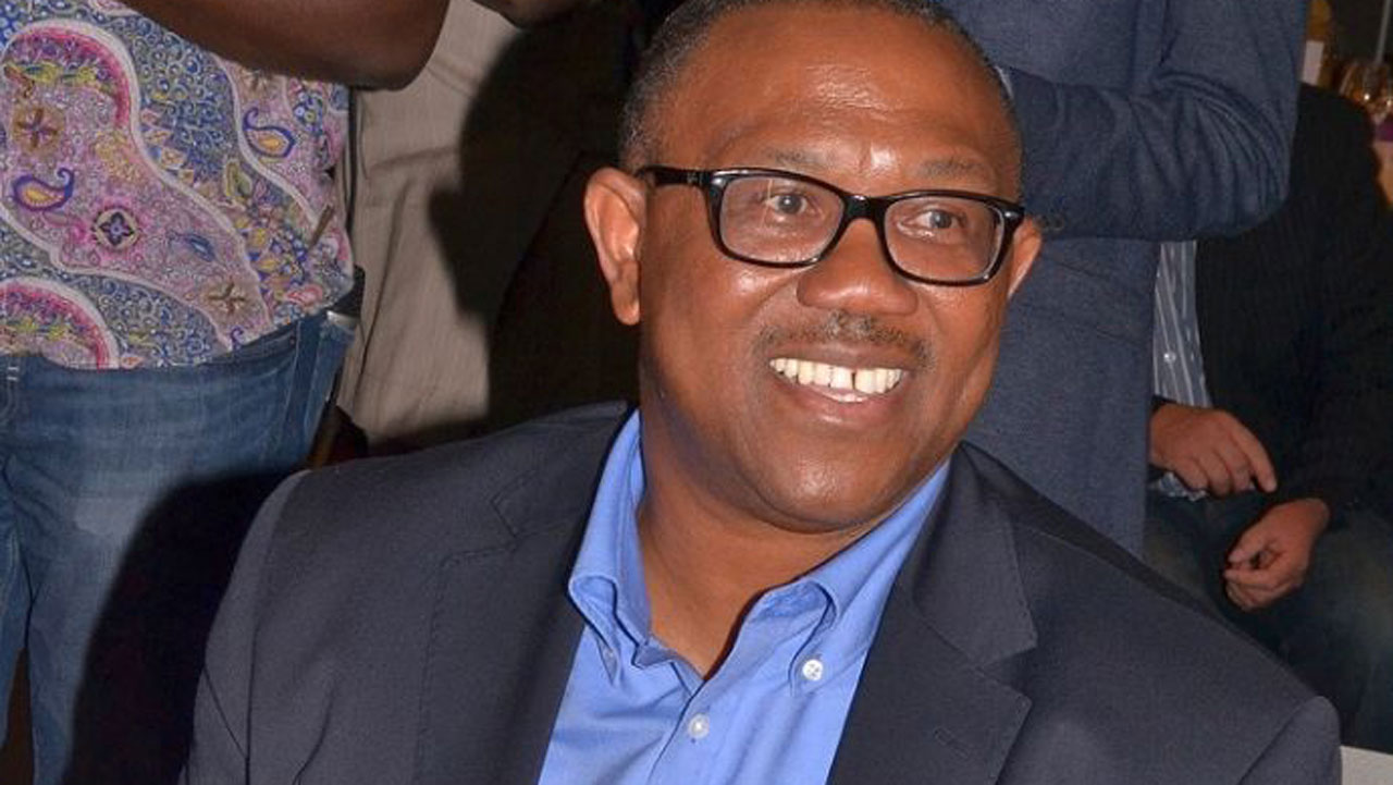•PDP Vice Presidential Candidate Peter Obi