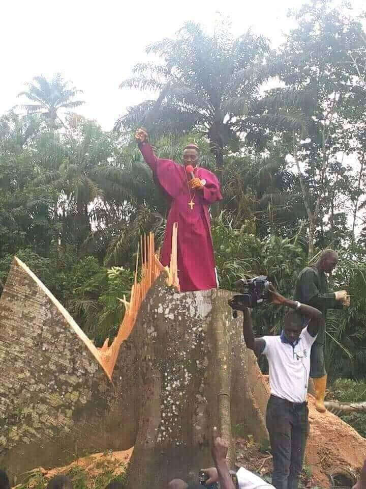 Igbo Land may not survive environmentally in the next 50 years •Govt. watches as 'crusaders of Christ' run riot