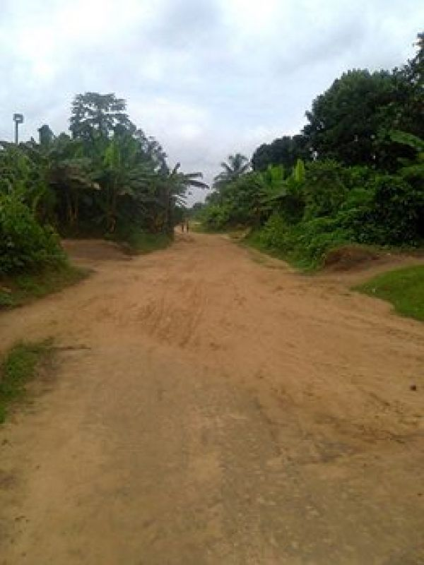 •Untarred road of Alatia Community.