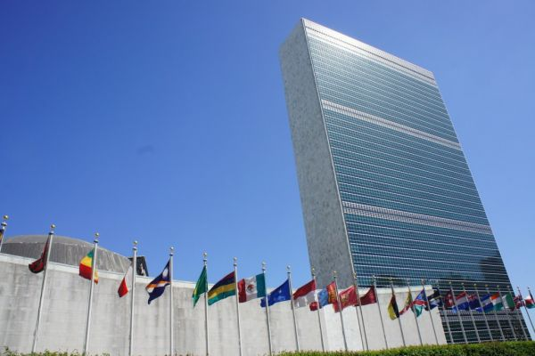 The UN and our endangered world