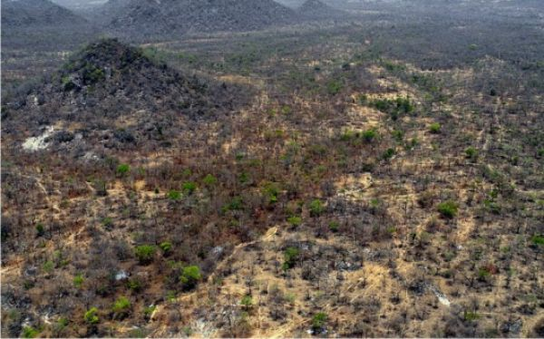 •Aerial view of Sambisa Forest
